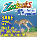 Zoobooks Magazine - #1 Kids Animal Magazine